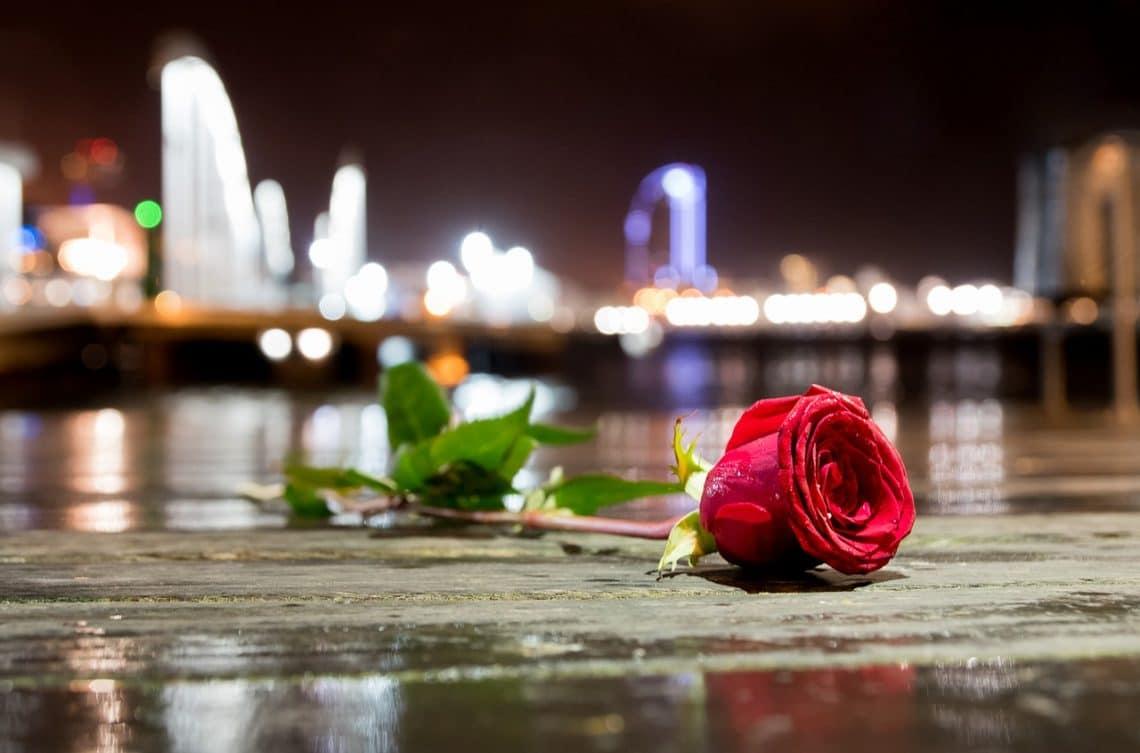 rosa en el puerto de Barcelona
